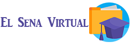 El Sena Virtual